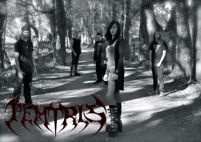Temtris! From left to right: Anthony 'Fox' Roberts, Llew Smith, Dale Green, Genevieve Rodda, Ben Hart.  Photo by Bobbie Jo Smith.